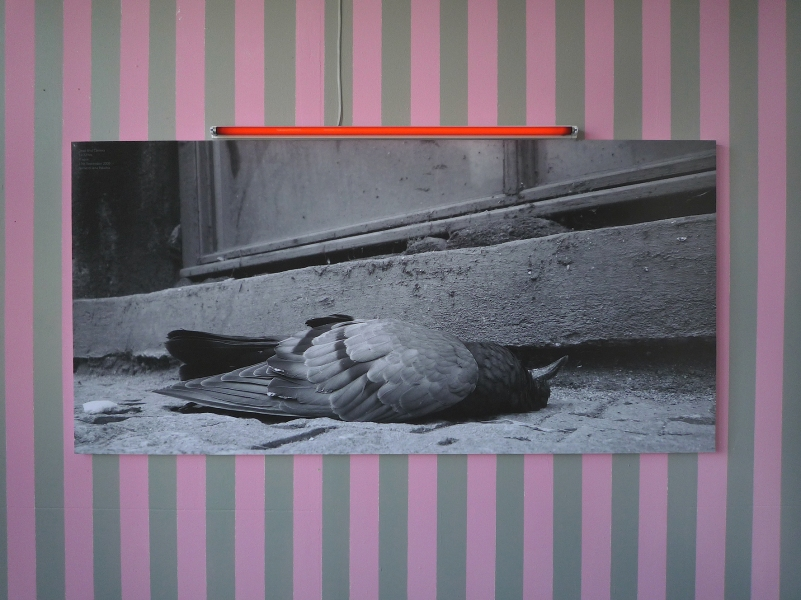 The Caretaker | Karin van Pinxteren | MeetFactory Prague